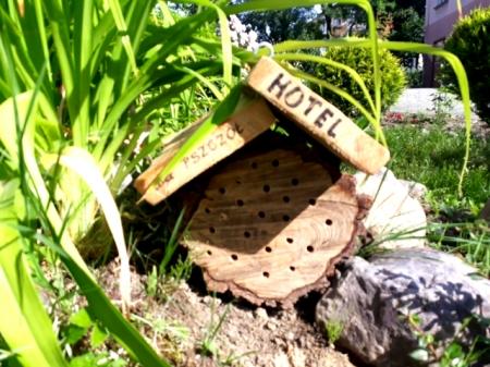 Nowe domki dla pszczół