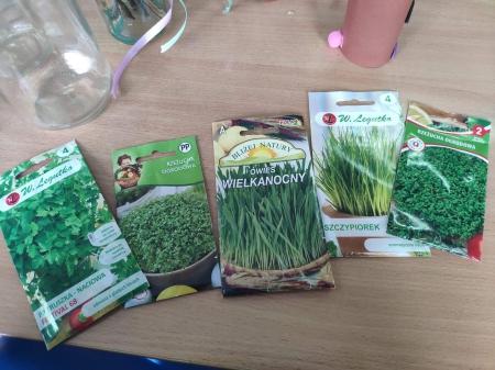 Sadzimy krokusy, siejemy i dbamy o nasze świetlicowe roślinki